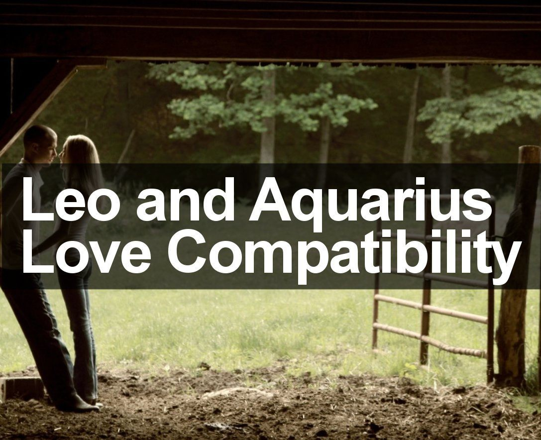 Leo And Aquarius Love Compatibility Marriage