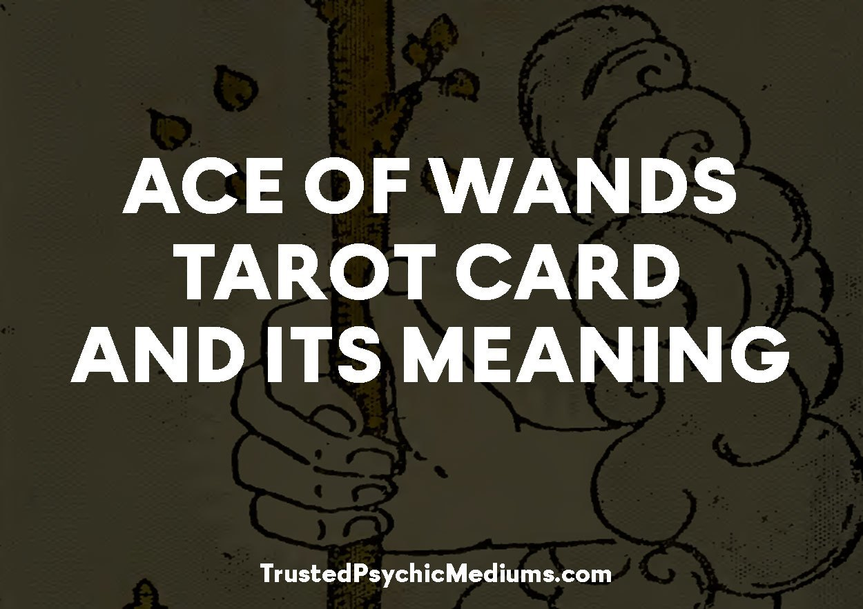 Ace of Wands Tarot Card and its Meaning