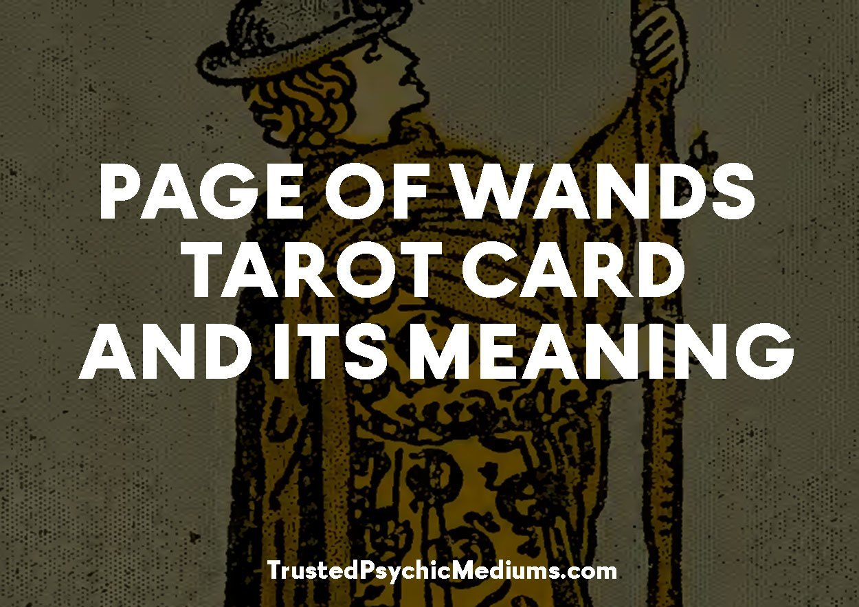 Page of Wands Tarot Card and its Meaning