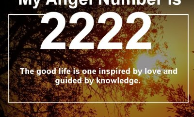 Will Angel Number 2222 bring good luck to you? Find Out Now...