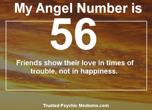 angel number 56