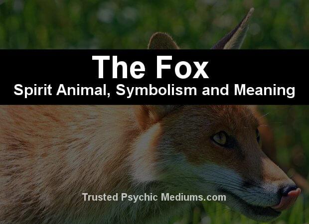fox symbolism
