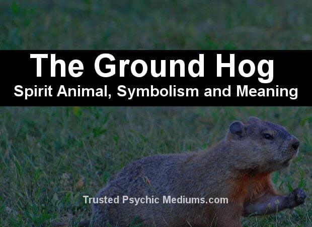 groundhog symbolism