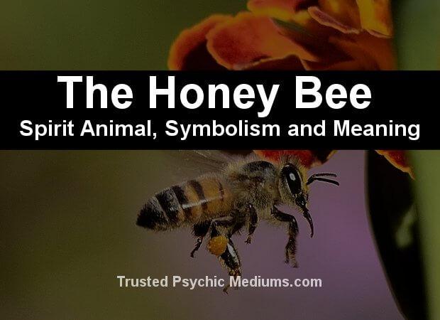 honey bee symbolism