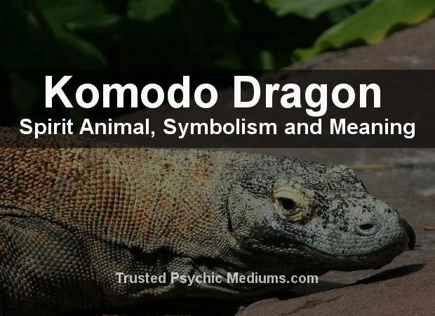 Komodo-Dragon Spirit Animal