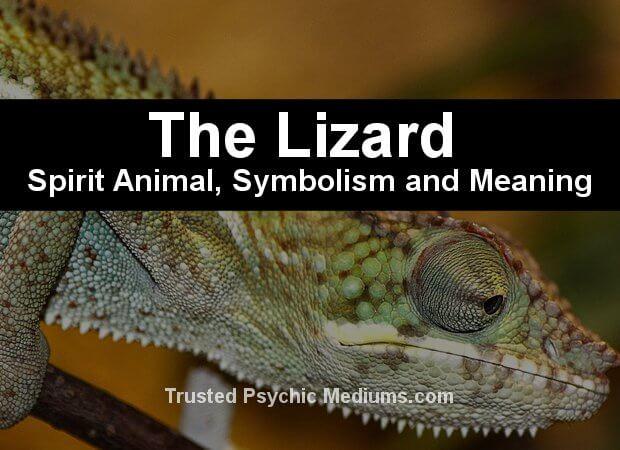 lizard symbolism