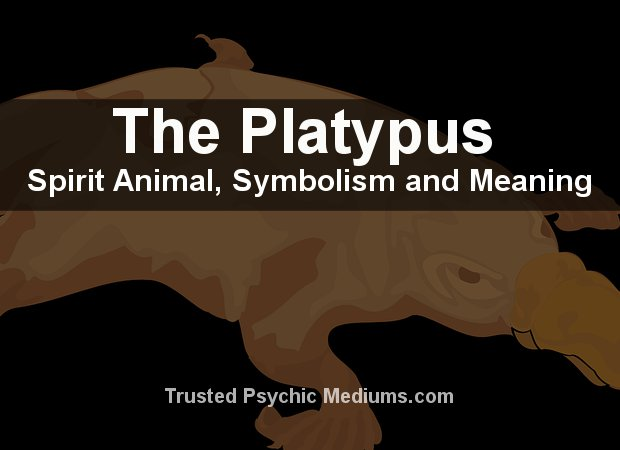 The Platypus Spirit Animal