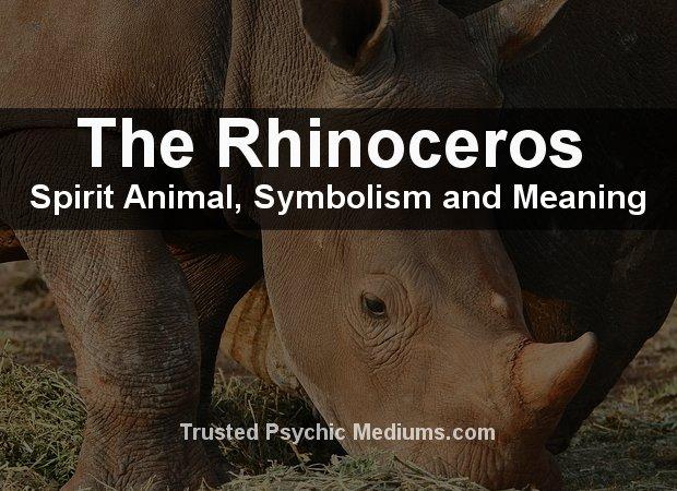 Rhinoceros Spirit Animal