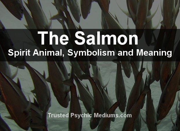 Salmon Spirit Animal