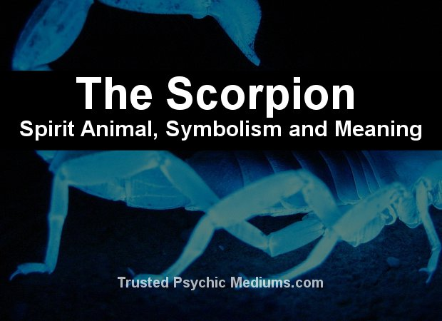 meaning of seeing a scorpion