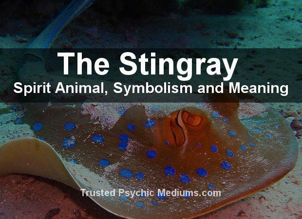 The Stingray Spirit Animal