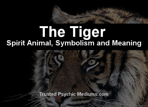 "the tyger symbol analysis Skinning ""the lamb"" and ""the tyger"" the present study is an in-depth analysis of the two poems ""the lamb another symbol of his coming sacrifice in."