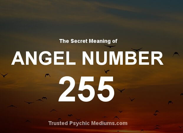 Angel Number 255 and its Meaning