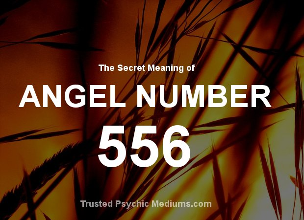 Angel Number 556 and its Meaning