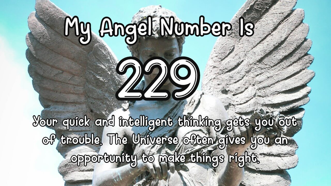 Angel Number 229 And Its Meaning