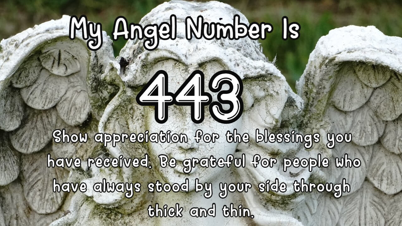 Angel Number 443 And Its Meaning