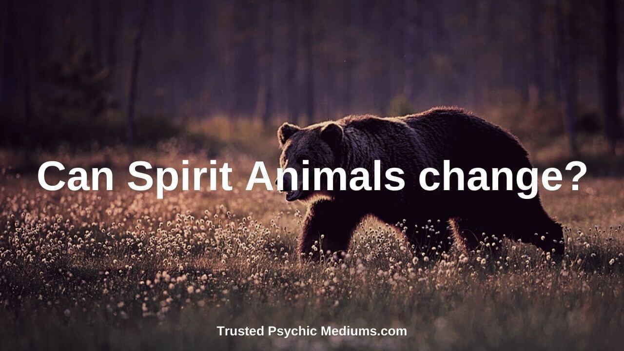 Can Spirit Animals change?