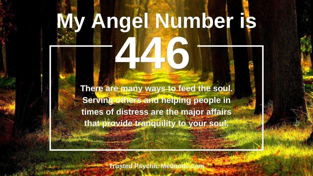 Angel Number 446 and it's meaning