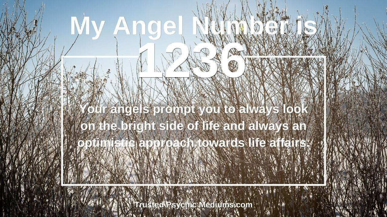 Angel Number 1236 is powerful. Discover why…